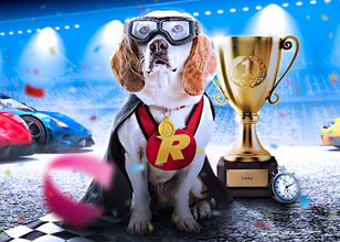 New Rizk Races with daily prizes and free spins